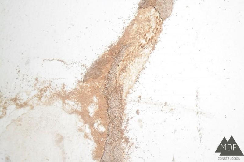 ¿Cómo proteger unedificio ante el ataque de termitas?